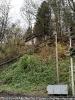2019_11_17 Baum über Gleise