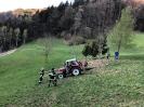 2020_04_14 Traktorbergung Vorderlimberg_7