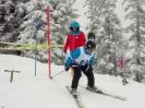 Bez.Fam.Skitag 2018_2