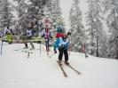 Bez.Fam.Skitag 2018_3